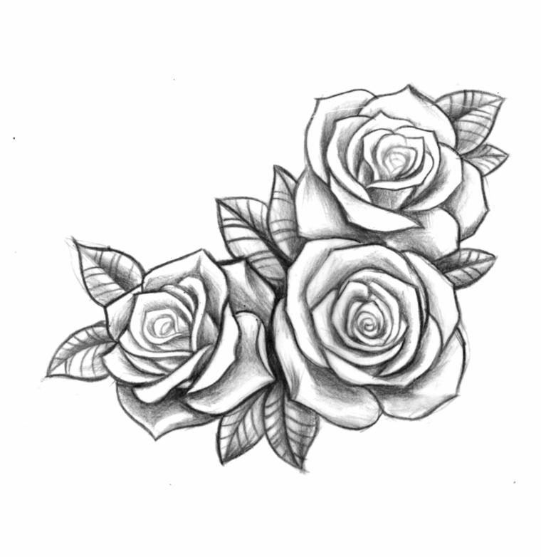 disegno a matita con tre rose aperte una accanto all'altra in bianco e nero, significato rosa tattoo
