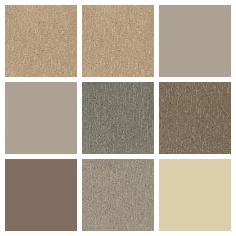 tonalità color tortora, dalle più chiare alle più scure per dipingere pareti e per soluzioni d'arredo