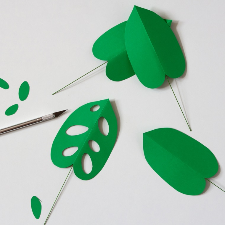 Foglie di Monstera Obliqua di colore verde e buchini fatti con un taglierino