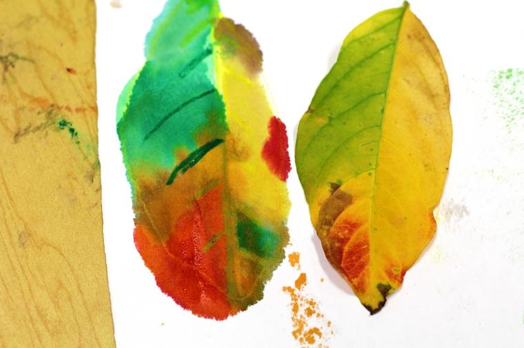 Un disegno di una foglia autunnale con vari colori