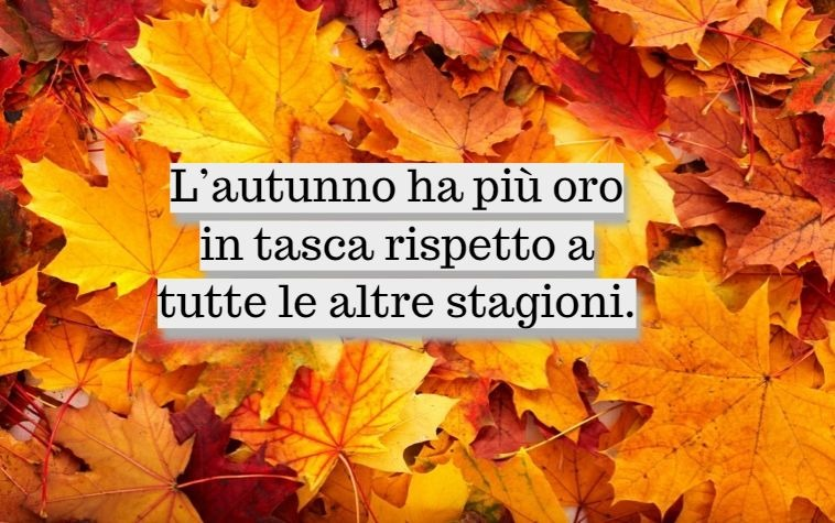Paesaggi autunnali immagini con foglie gialle cadute e una scritta ispirata all'autunno