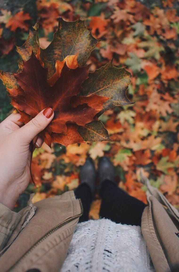 Donna che tiene in mano delle foglie secche cadute, paesaggi autunnali immagini