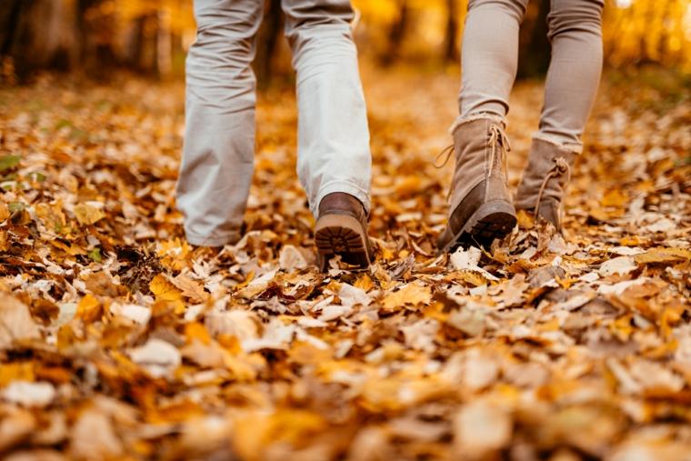 Paesaggi autunnali immagini, foresta con foglie secche per terra e un uomo e donna che camminano