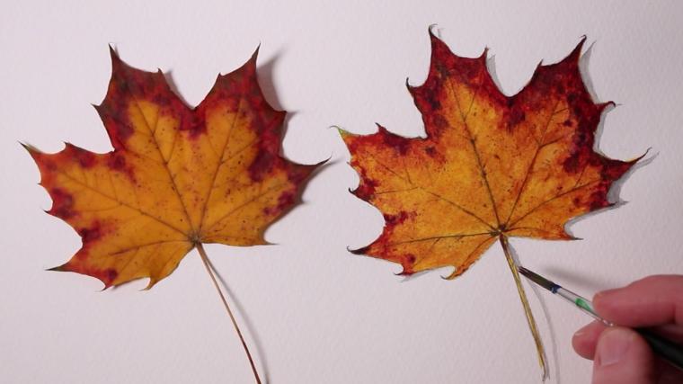 Immagini autunno e due foglie cadute secche di colore giallo