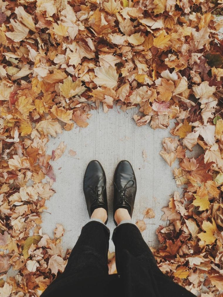 Gli sfondi più belli al mondo, tante foglie secche per n pavimento di legno