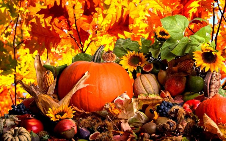 Idee per delle immagini autunnali bellissime con zucche, ghiande e foglie secche cadute