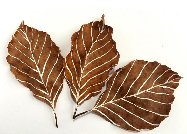 Immagini autunno e tre foglie secche con dei disegni a base di pennarello bianco