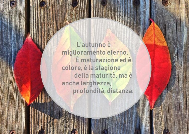 Immagini foglie autunnali e un'idea con scritta ispirata all'autunno in un cerchio di colore grigio