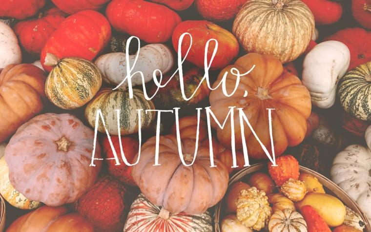 Immagini paesaggi autunnali e tante zucche colorate, scritta in inglese Hello Autumn