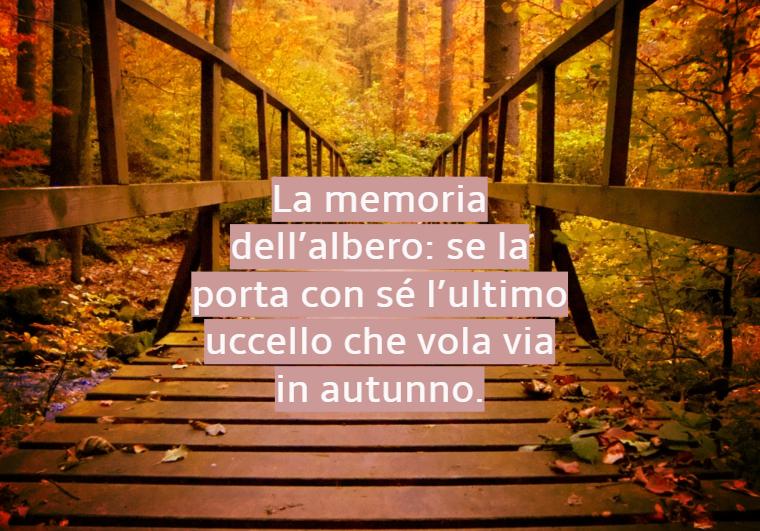 Immagini paesaggi autunnali con un ponte di legno e una foresta con foglie cadute, citazione ispirata all'autunno