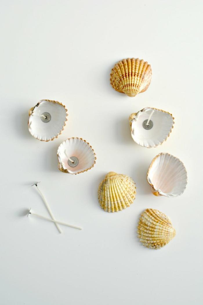 Idee lavoro artigianale fai da te con delle conchiglie e stoppini per realizzare delle candele