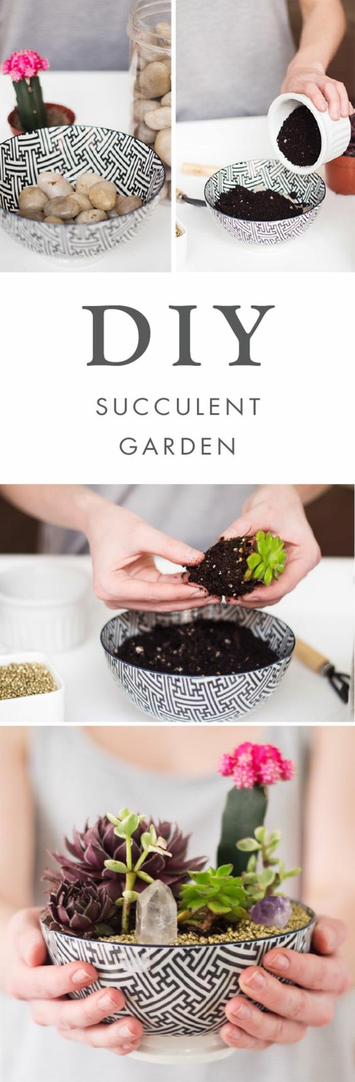 Piatto tondo con terriccio e sassi da utilizzare come vaso per piante grasse