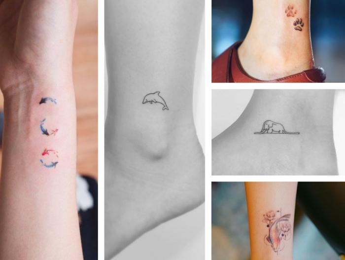 Tatuaggi piccoli significativi e i disegni di delfini e impronte di animaletti