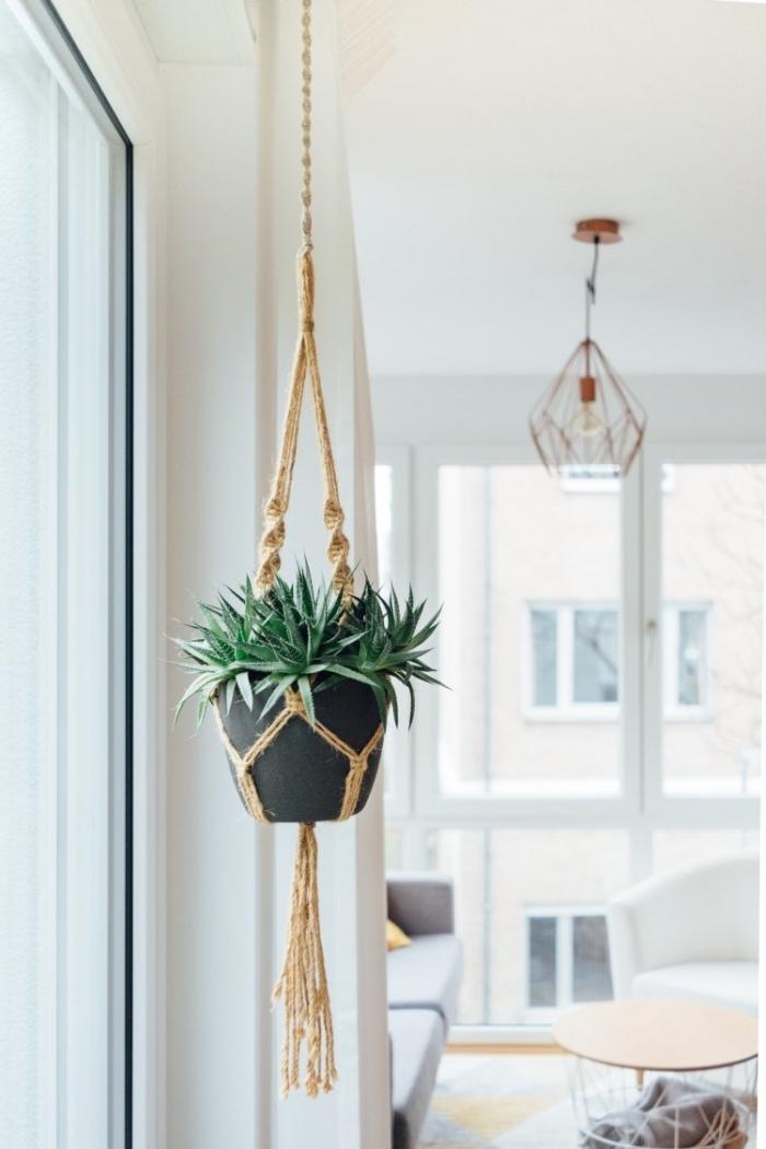 Portavaso corda a treccia e una pianta grassa sospesa