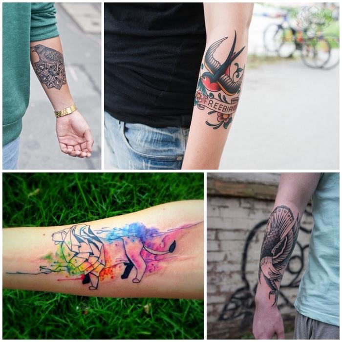 Tattoo uomo braccio e un'idea con disegni colorati di animali e uccelli