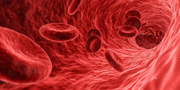 Globuli rossi che si muovono, mancanza di emoglobina