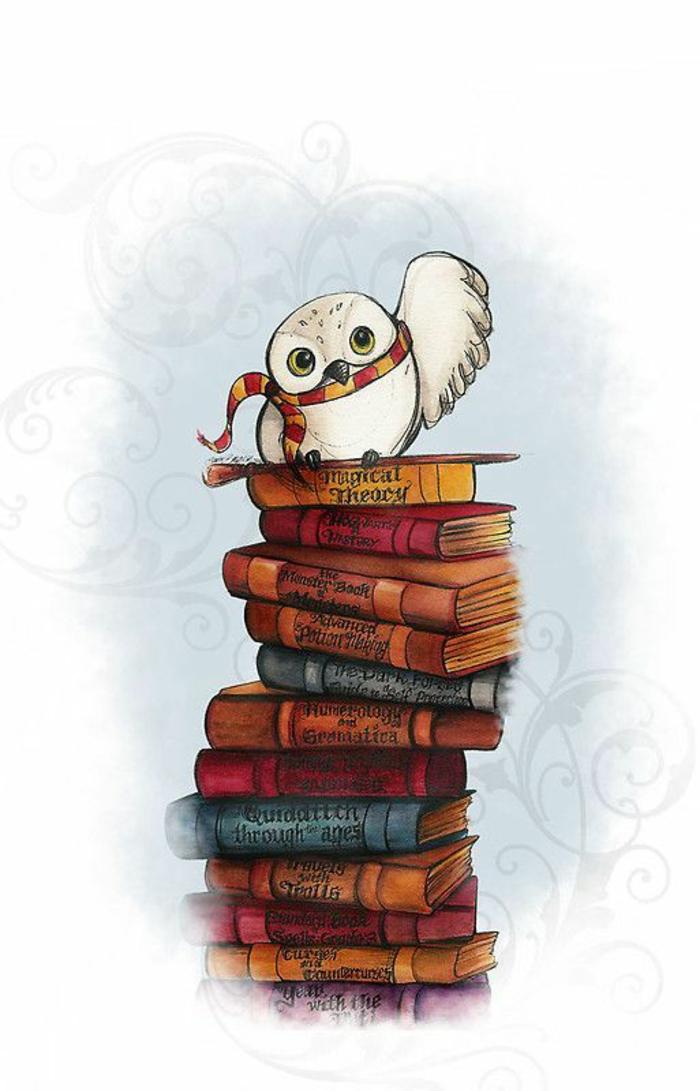 Tanti libri vintage, gufo di colore bianco, sfondi più belli del mondo