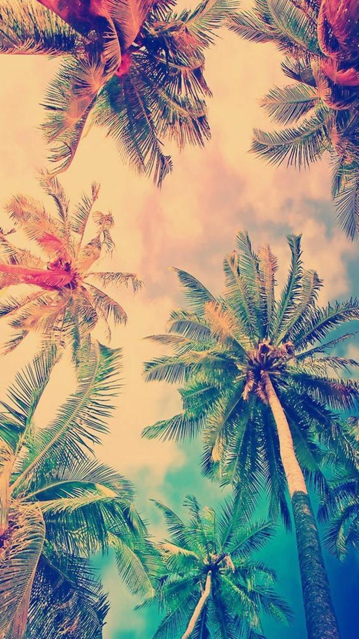 Sfondi telefono belli, disegno di palme, palme colorate di verde