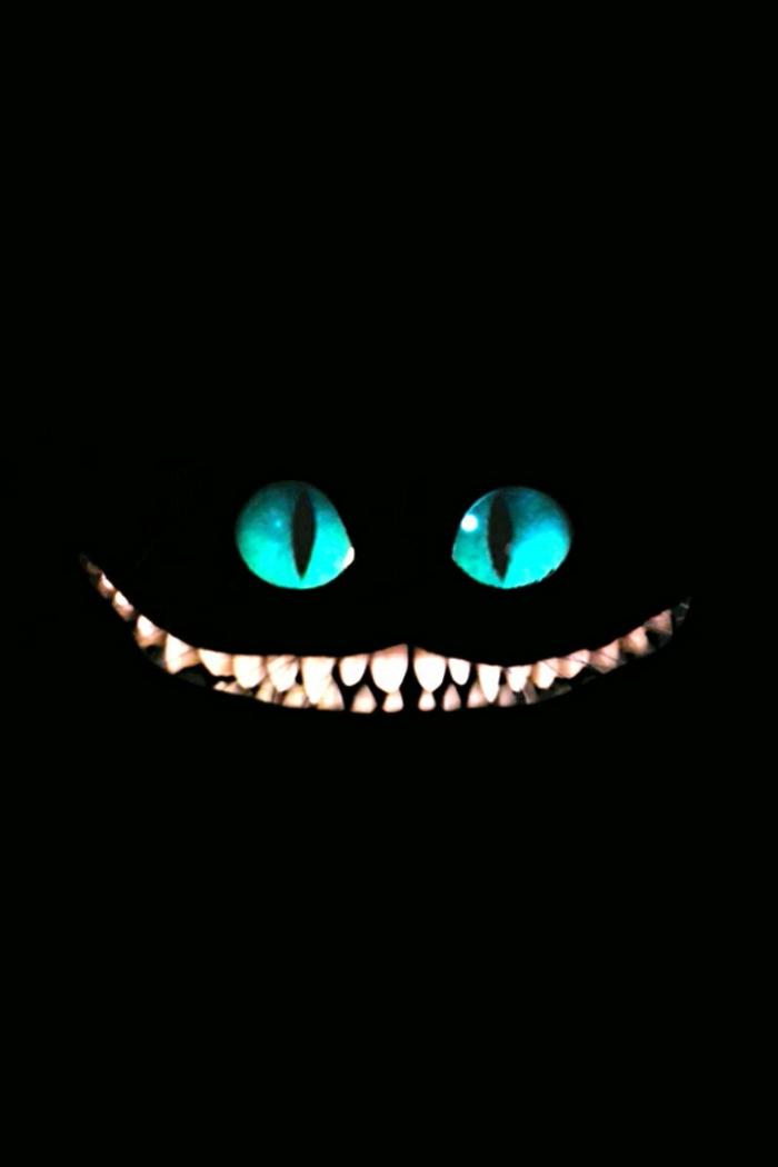 Animaletto con occhi blu, immagini per sfondo telefono