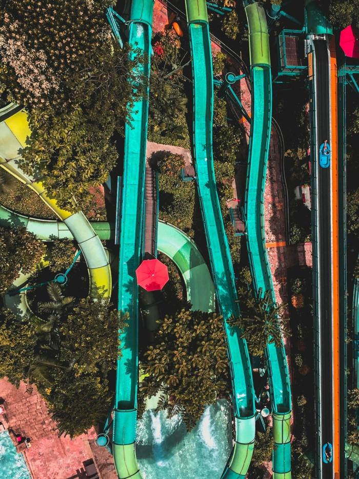 Scivoli in piscina, foto sfondi, alberi con foglie verdi