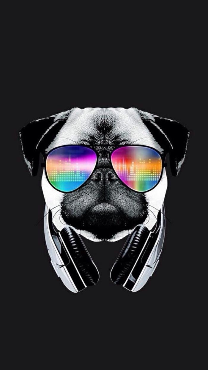 Cane con cuffie, occhiali da sole, foto di un cane, immagine per schermo telefono