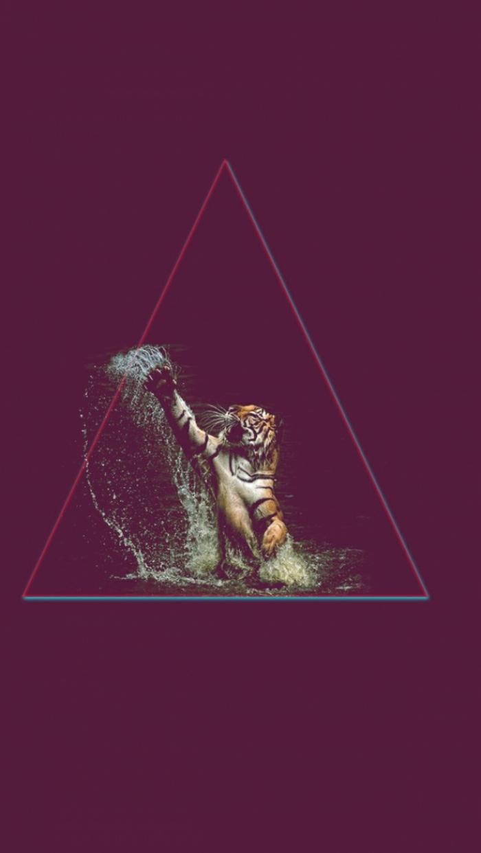 Tigre che gioca con acqua, triangolo con tigre, foto per schermo telefono