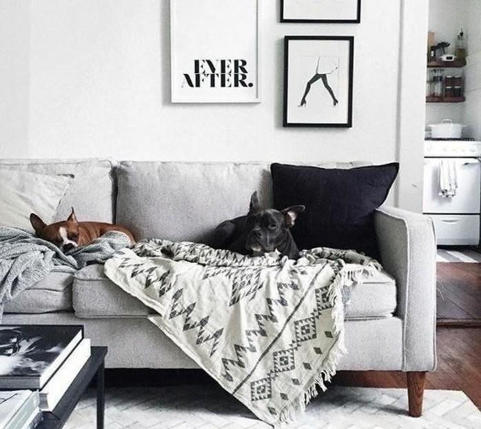 Salotto con divano, parete di colore bianco, decorazioni da parete con quadri