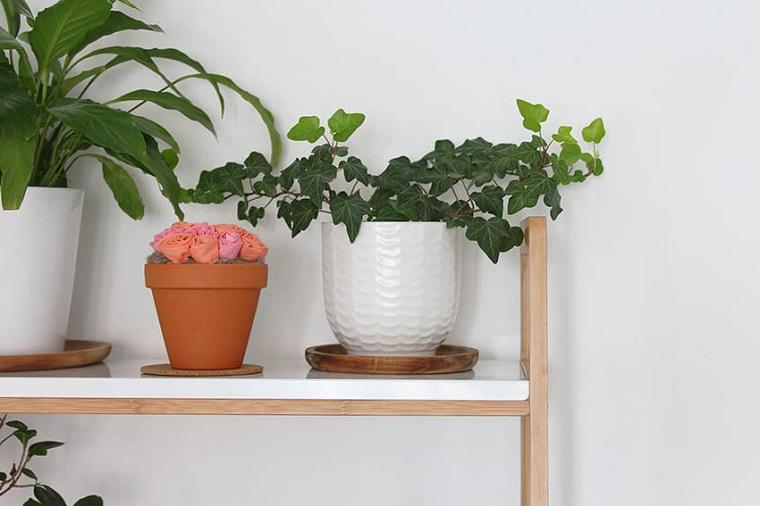 Mensola di legno, piante in vasi, vaso di terracotta, regali da fare alla mamma