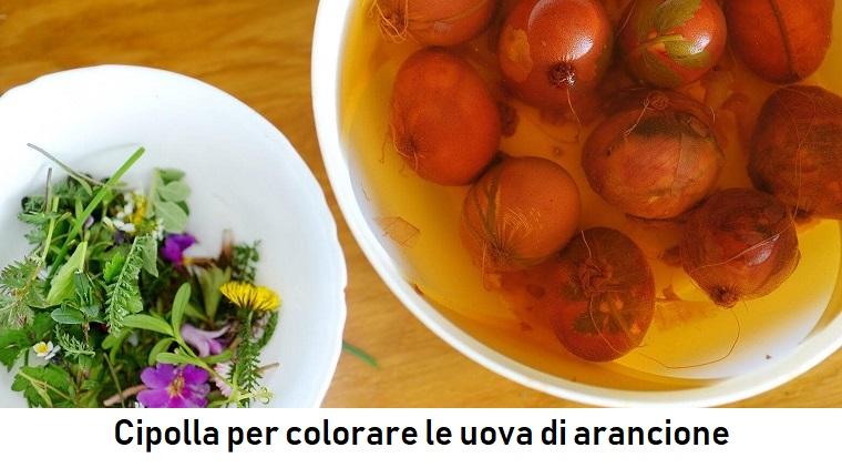 Lavoretti pasquali originali, cipolla immersa in acqua, piatto con fiorellini