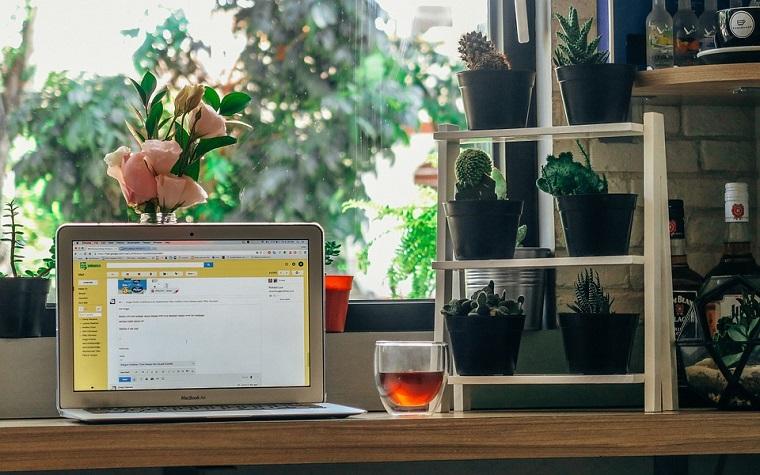 Mensola con piante grasse, computer portatile, arredare uno studio