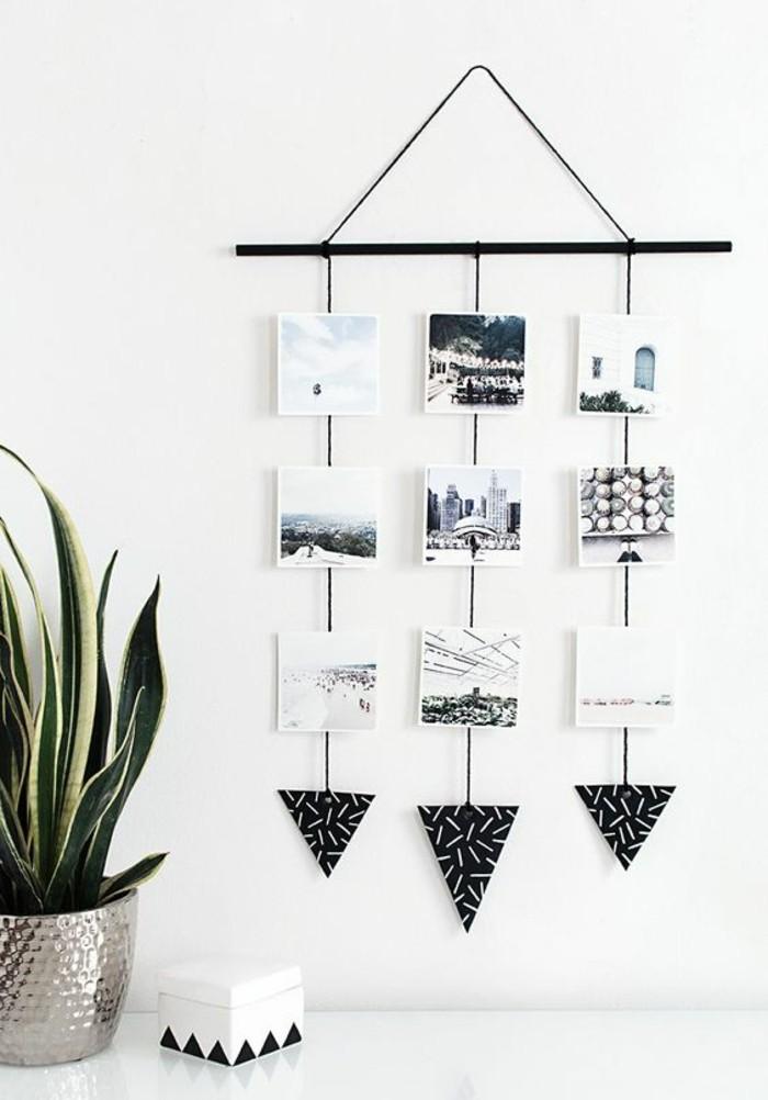 Bastone di legno, parete con fotografie, pianta verde in vaso