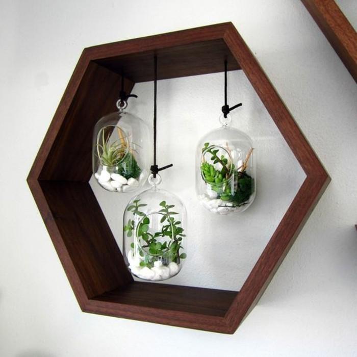 Esagono di legno, vasi da appendere, vasi con piante succulente