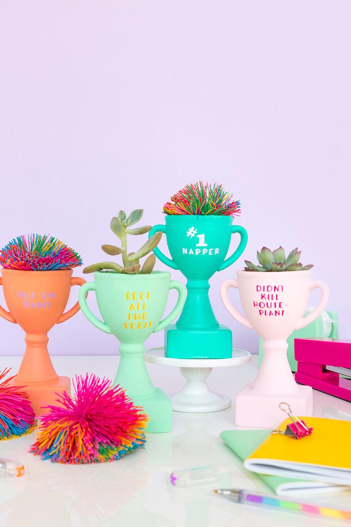 Idee regalo anniversario per lui, coppe dipinte, vasi fiori grasse
