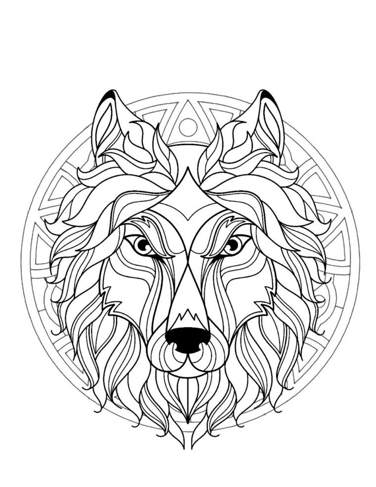 Tipi di mandala, disegno in un cerchio, disegno di un animale