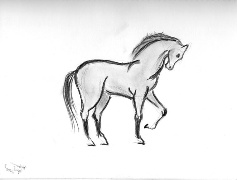 Cose facili da disegnare, abbozzo di un cavallo, disegnare con la matita