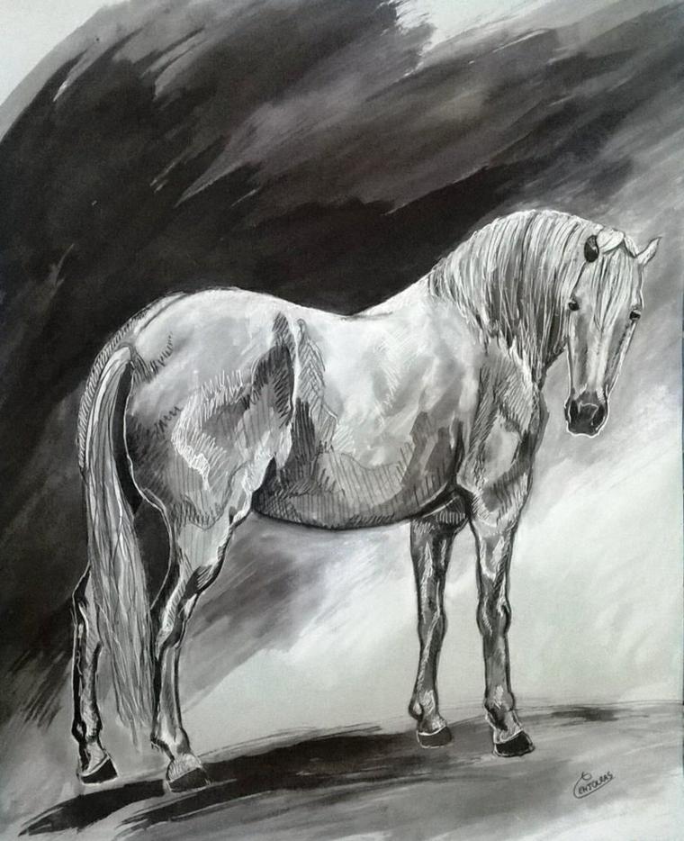 Disegni belli ma facili, schizzo di un cavallo, oscurato con matita