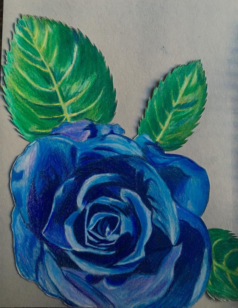 Disegno colorate con matite, rosa di colore blu, disegni facili da disegnare a mano libera