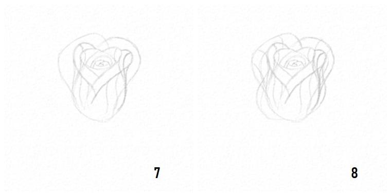 Petali di una rosa, disegni facili da disegnare a mano libera
