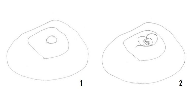 Tutorial disegno rosa, due cerchi, disegni facili da disegnare a mano libera