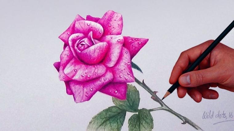 Disegni tumblr facili, gocce d'acqua sui petali, rosa disegnata a matita