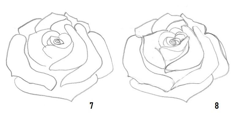 Schizzo di un fiore, disegno di una rosa, disegni di fiori a matita