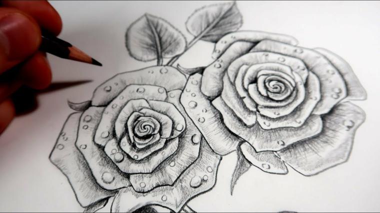 Disegni tumblr facili, come disegnare una rosa, gocce d'acqua sui petali