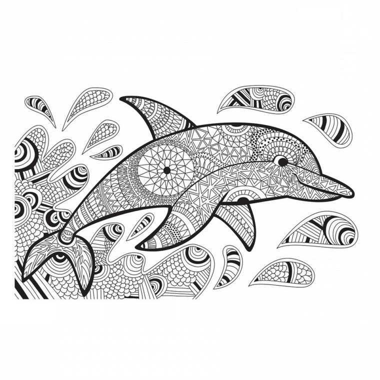 Disegni geometrici da colorare, disegno di un delfino, schizzi di acqua