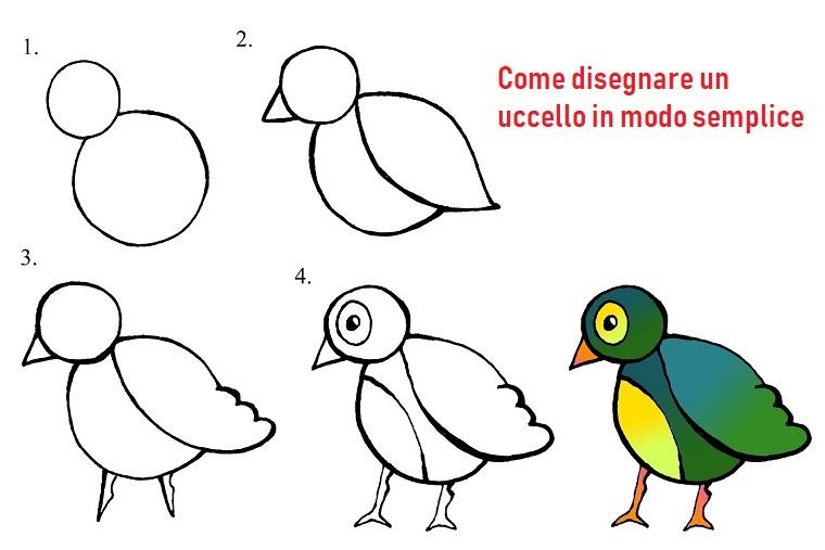 Disegni a matita facili, disegno di un uccello, abbozzo su foglio bianco