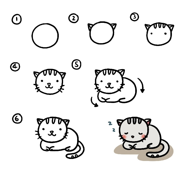 Immagini da ricopiare, come disegnare un gatto, passaggi da seguire