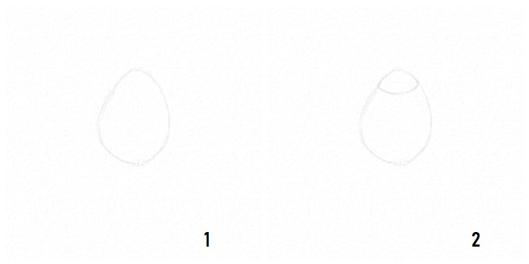 Disegno rosa stilizzata, passaggi per disegnare una rosa, due cerchi