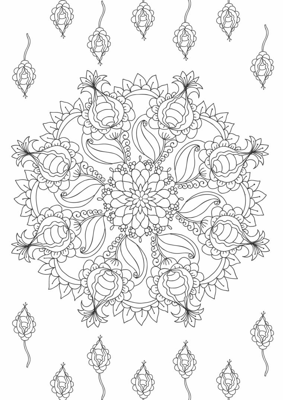 Motivi floreali da colorare, ornamenti con semicerchi, disegni di mandala