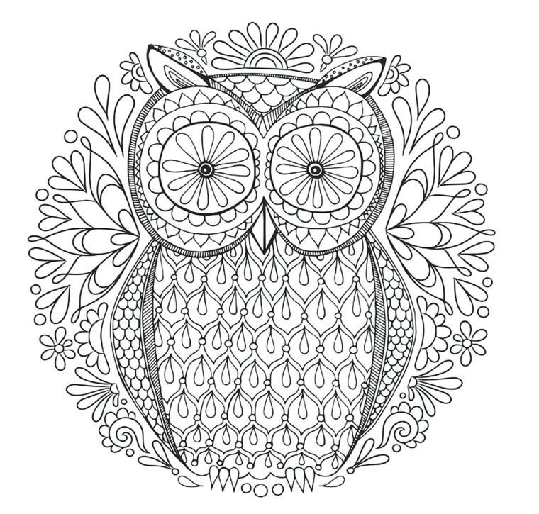 Mandala da colorare e stampare, disegno di un gufo, ornamenti floreali