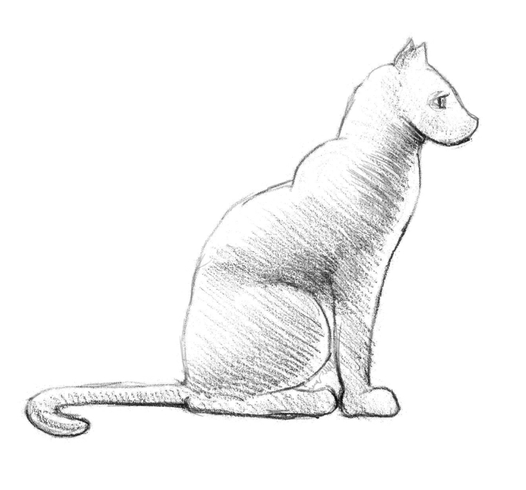 Schizzo con chiaro scuro, disegno di un gatto, disegni da copiare facili e belli