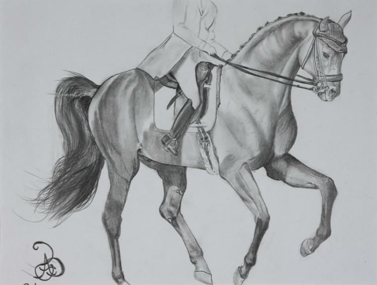 Donna a galoppo, disegno di un cavallo, chiaro scuro con matita